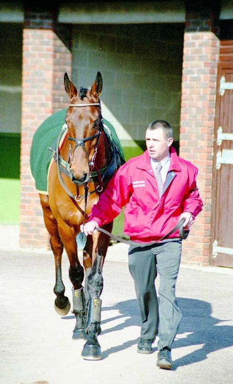 Racehorse Rule Supreme with Jockey, D J Casey
